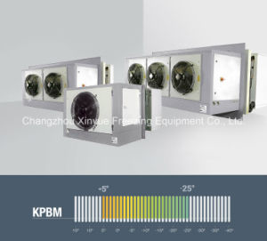 Monoblock Industrial Dual-Temperature (Low - Medium) Refrigeration Units for Cold Room pictures & photos