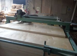 Two Times Press 18mm Plywood for Furniture Use pictures & photos