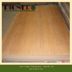 4*8′ Size Veneer Plb Poplar for India pictures & photos
