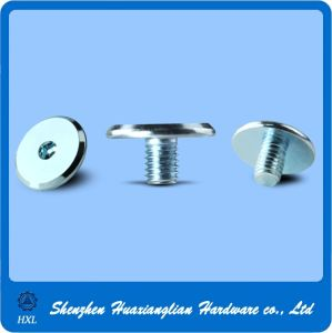 OEM Stainless Carbon Steel Pancake Flat Wafer Head Machine Screw pictures & photos