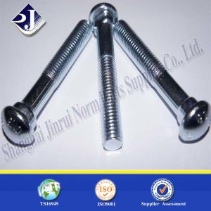 Fish Bolt with Oval Neck Zinc Plated pictures & photos