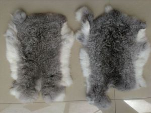 Natural Grey Rabbit Fur Skin/Chinchilla Rabbit Fur Skin pictures & photos
