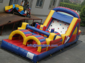 Double Stitching Inflatable Game for Indoor or Outdoor Use (A440) pictures & photos