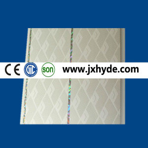 Market Hot Sell Light Weight PVC Decoration Panels (RN-167) pictures & photos