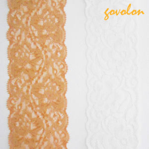 Hot - Selling Cotton Elastic Lace pictures & photos