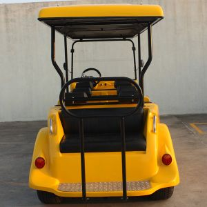 New Design 8 Searter Classical Golf Cart Dn-8d with Ce Certificate pictures & photos