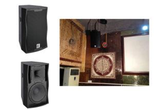 300 Watt PA Speaker pictures & photos