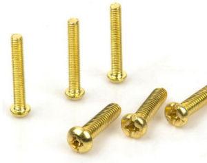 Brass Screw/ Fastener / Hardware / Spare Parts / Bolt pictures & photos