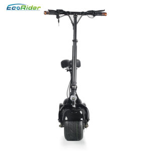 Ecorider Two Wheels Electric Harley Scooter Citycoco Scooters pictures & photos