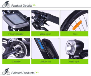 Ingenious F/R Disc Brake Electric Mountain Bike pictures & photos
