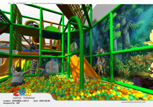 High Quality Castle Themed Indoor Playground pictures & photos