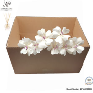 Ap Reed Diffuser Absortion Dry Sola Flower 8PCS/Box 6cm Corymbiform pictures & photos