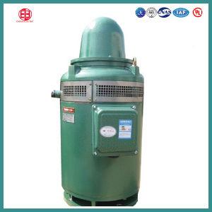 200HP IEC, NEMA Standard Vertical Hollow Shaft Vhs Pump Motor pictures & photos