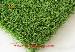 Excellent Supplier Top Quality Artificial Turf for Golf Field