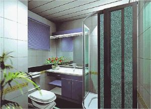 High Impact Strenght Unbreakable Embossed Polycarbonate Sheet for Bathroom pictures & photos
