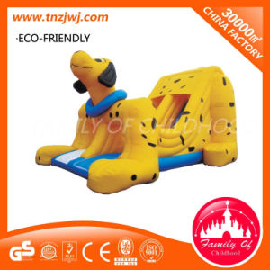 Children Inflatable Indoor Playground Inflatable Cartoon Inflatable House pictures & photos