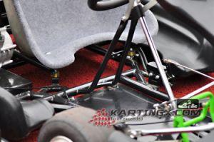 168cc/200cc/270cc Cheap 4 Wheels Gas Racing Go Kart Beatle Design pictures & photos