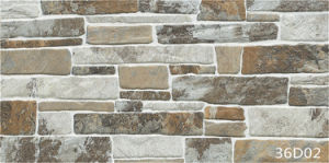Decoration Reef Rock Stone Wall Tile for Outdoor (300X600mm) pictures & photos
