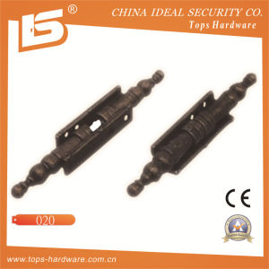 High Quality Iron Door Hinge (020) pictures & photos