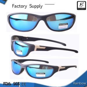designer parfums ltd  designer sunglasses