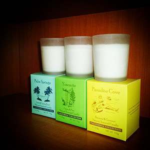 Top Quality Frosted Decorative White Glass Craft Soy Candles pictures & photos
