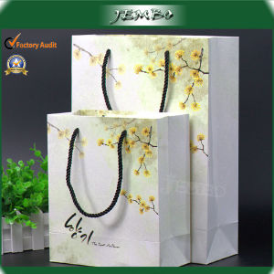 Promotion Advertise Give Away Cosmetic Store Packing Bag pictures & photos
