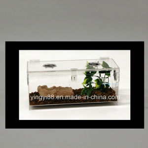 High Quality Acrylic Reptile Display Case for Sale pictures & photos