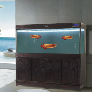Aquarium Fish Tank with Cabine
