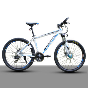 Cheapest 24 Speed Adult Mountain Bicycle pictures & photos