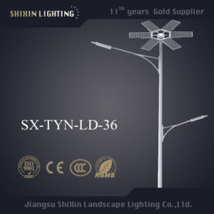 Lights Street Lights Solar Powered 40W (SX-TYN-LD-36) pictures & photos