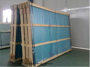 Tempered Green Blue Bronze Grey Tinted Glass pictures & photos