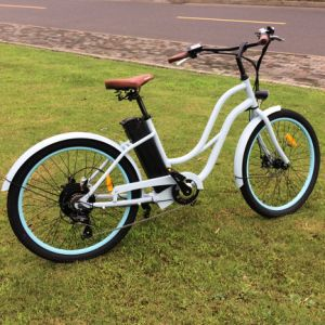 Big Motor Low Step Beach Electric Bike pictures & photos