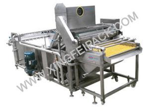 Multi-Functional Vegetabla Fruit Washing Machine (XF-QX) pictures & photos