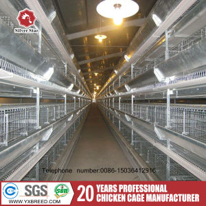 Factory Price Layer and Broiler Feeding Project Poultry Farm Automatic Chicken Layer Cage pictures & photos
