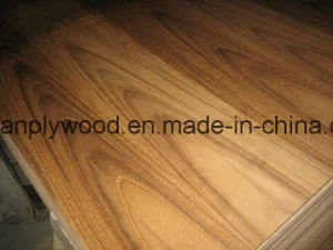 Gold Supplier for Fancy Plywood From Linyi pictures & photos