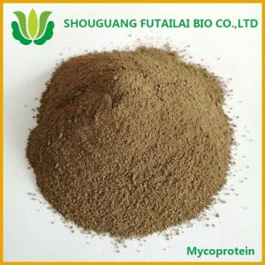 Glutamic Acid Thalli Protein Additive (MYCOPROTEIN) for Animal Feed with Low Price