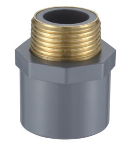 CPVC Male Coupling Copper Thread (CPVC ASTM SCH80) pictures & photos