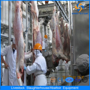 Hot Cow Slaughtering Line Processing Line Slaughtering Equipment pictures & photos