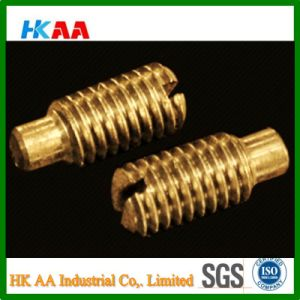 (Brass/ Stainless Steel) Slotted Grub Screw with Dog Point DIN417 pictures & photos