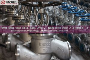 Stainless Steel Globe Valve Dn200 pictures & photos