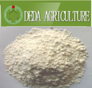Rice Protein Meal Animal Feed Powder pictures & photos