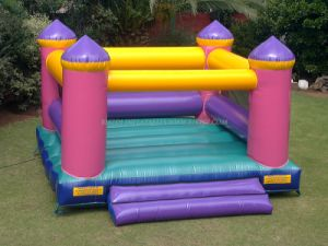 Inflatable Castles, Inflatable Jumping Castles (B1023) pictures & photos