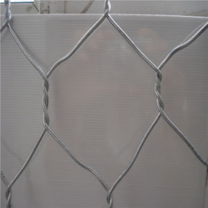 Rabbit Cage Galvanized Hexagonal Wire Mesh pictures & photos