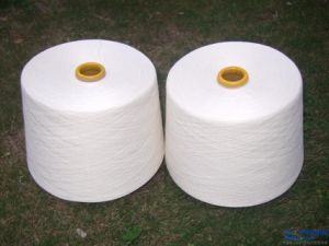 Spun Polyester Yarn for Sewing-Thread (50s/3) pictures & photos