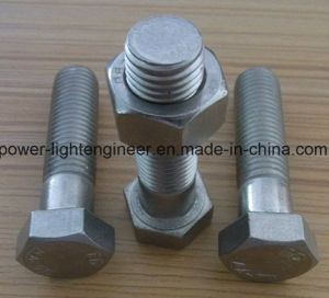 Hot DIP Galvanization Bolts & Nuts pictures & photos