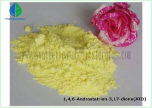 Anti Estrogen Steroid Treat Breast Cancer Powder Anastrozoles Arimidex 120511-73-1 pictures & photos
