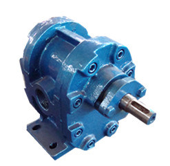 2cy Hydraulic Oil Gear Pump pictures & photos