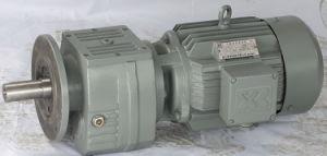 RF Geared Motor (RFS)