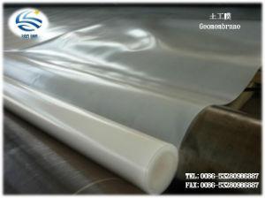 Manufacturer Export HDPE Pet Geomembrane Construction Waterproofing pictures & photos