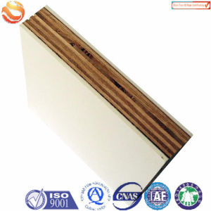 FRP Sandwich Panel for Construction pictures & photos